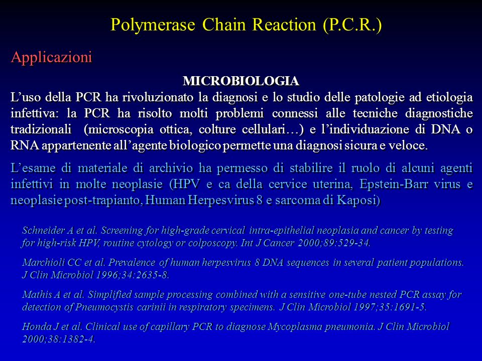 Polymerase Chain Reaction (P.C.R.)