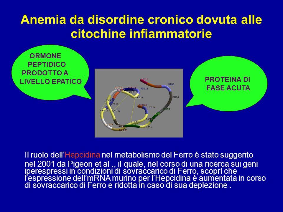Anemia da disordine cronico dovuta alle citochine infiammatorie