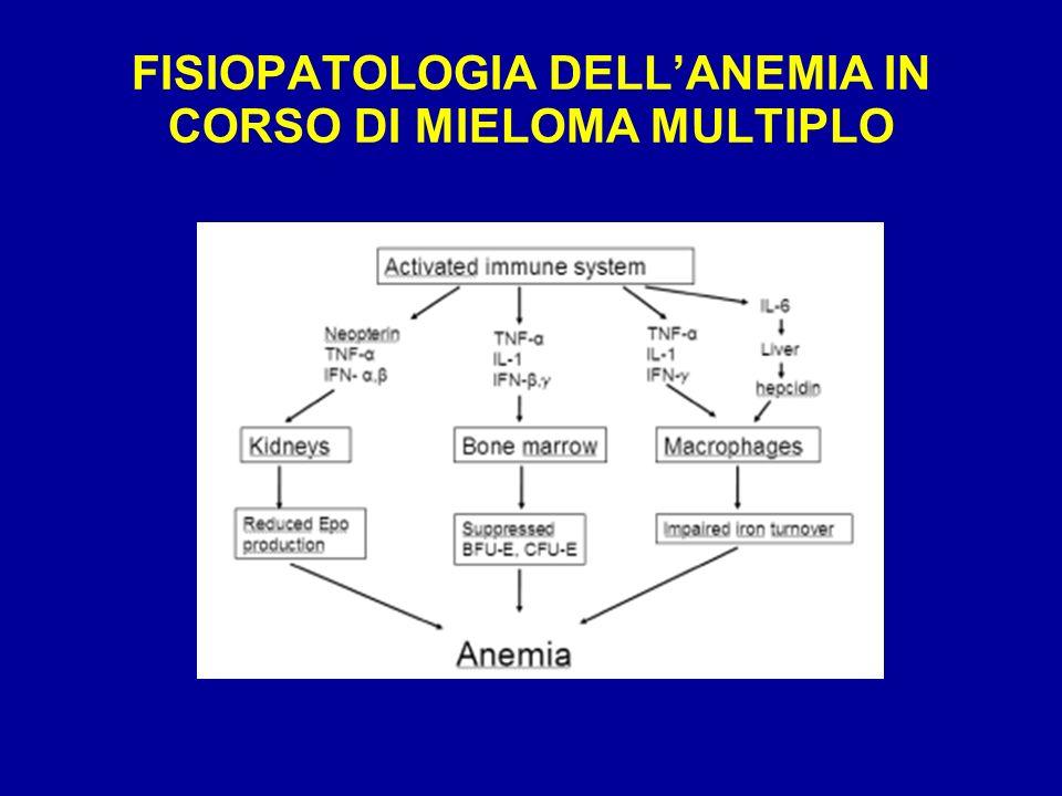 FISIOPATOLOGIA DELL'ANEMIA IN CORSO DI MIELOMA MULTIPLO
