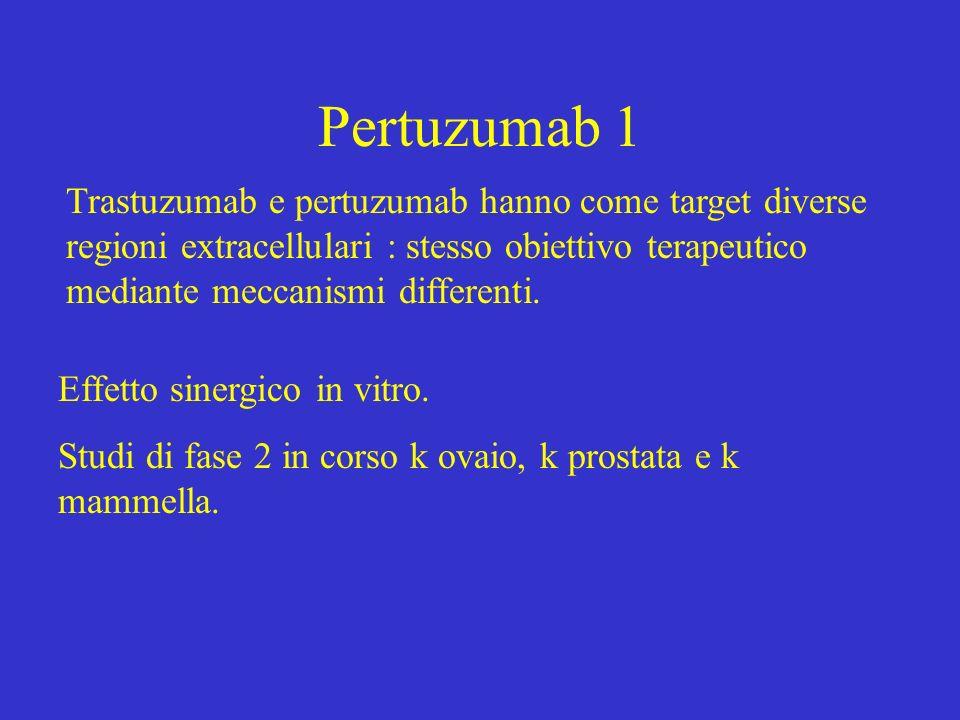 Pertuzumab 1 Trastuzumab e pertuzumab hanno come target diverse regioni extracellulari : stesso obiettivo terapeutico mediante meccanismi differenti.