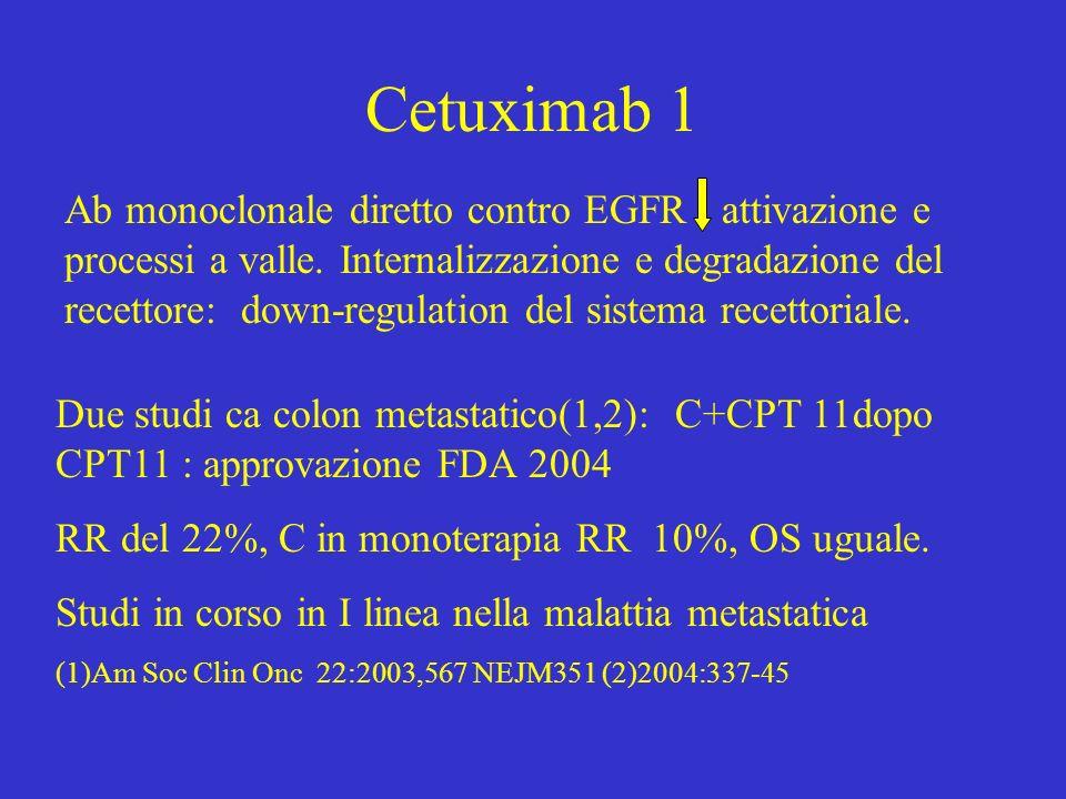 Cetuximab 1