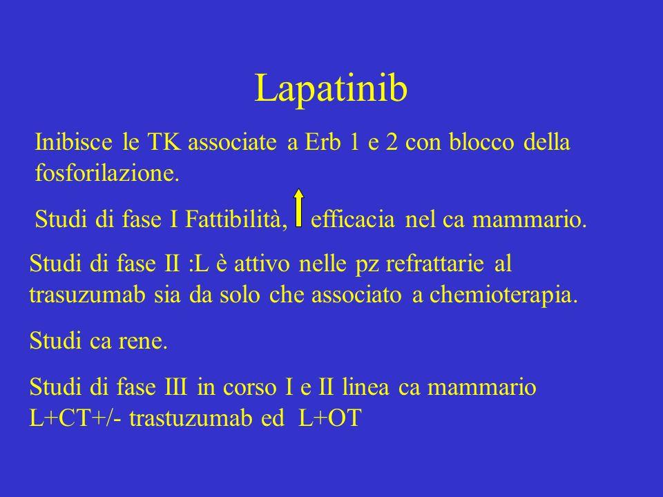 Lapatinib Inibisce le TK associate a Erb 1 e 2 con blocco della fosforilazione. Studi di fase I Fattibilità, efficacia nel ca mammario.