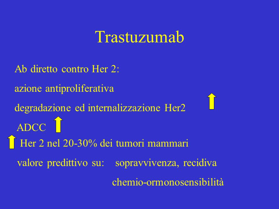 Trastuzumab Ab diretto contro Her 2: azione antiproliferativa