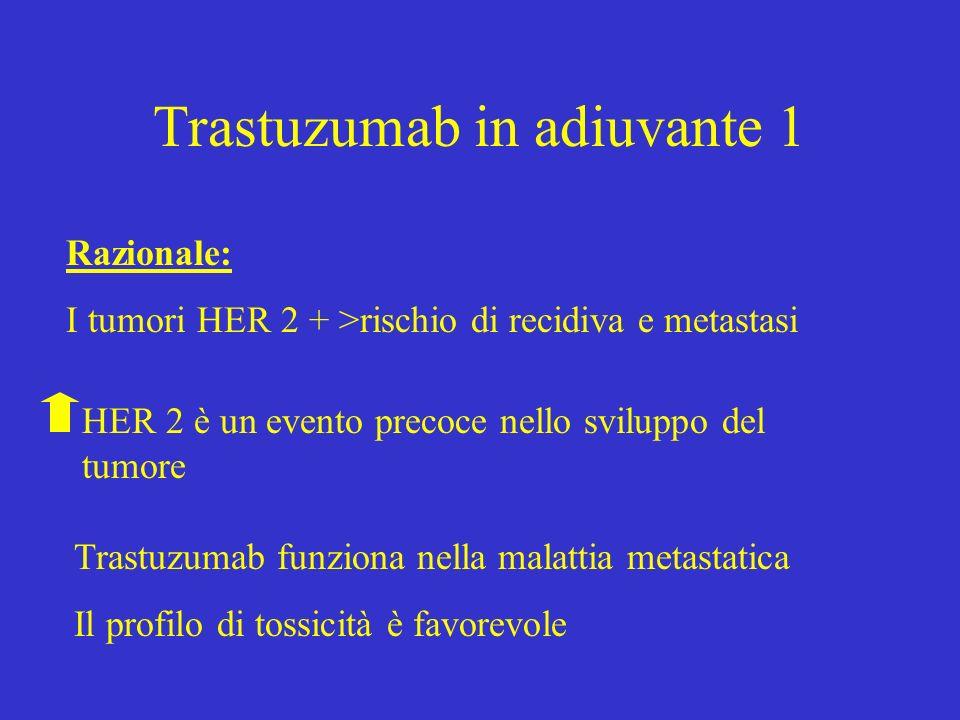 Trastuzumab in adiuvante 1