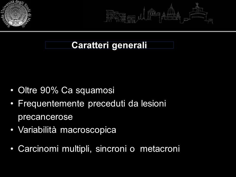 Caratteri generali Oltre 90% Ca squamosi. Frequentemente preceduti da lesioni precancerose. Variabilità macroscopica.