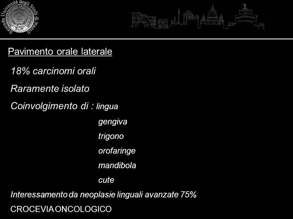 Pavimento orale laterale