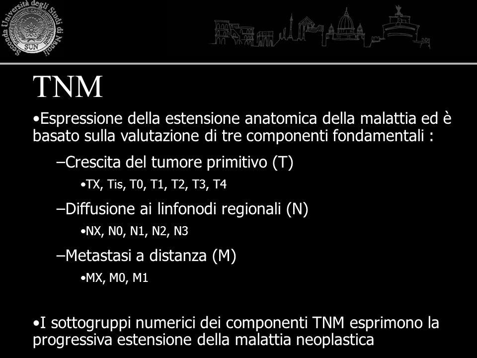 TNM Espressione della estensione anatomica della malattia ed è basato sulla valutazione di tre componenti fondamentali :