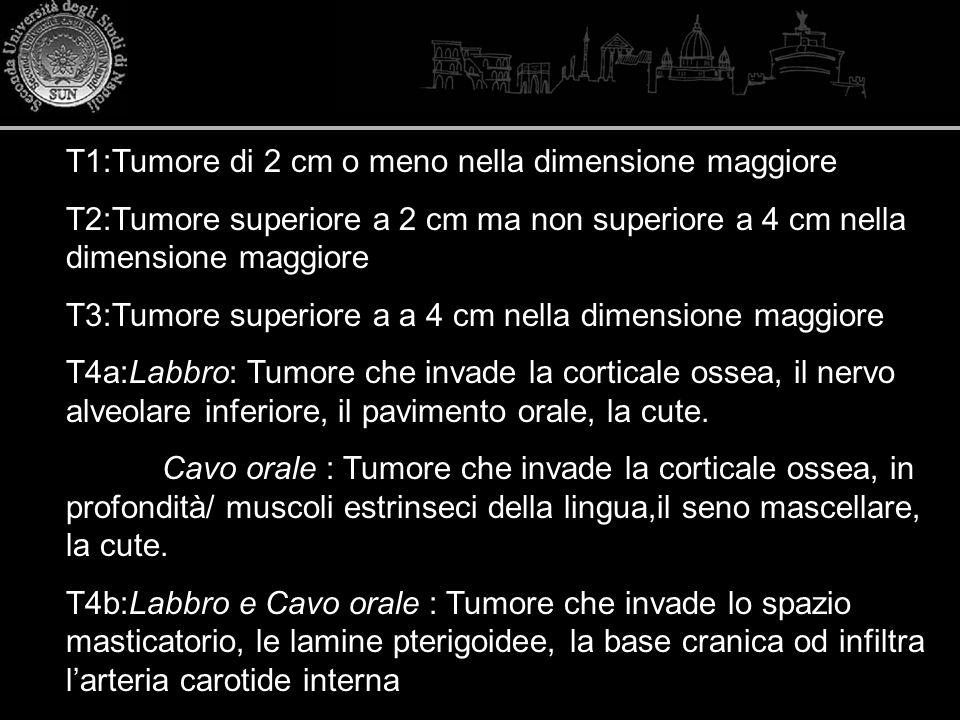 T1:Tumore di 2 cm o meno nella dimensione maggiore