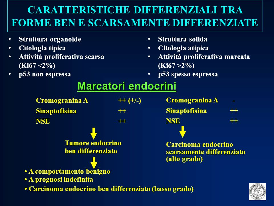 CARATTERISTICHE DIFFERENZIALI TRA FORME BEN E SCARSAMENTE DIFFERENZIATE