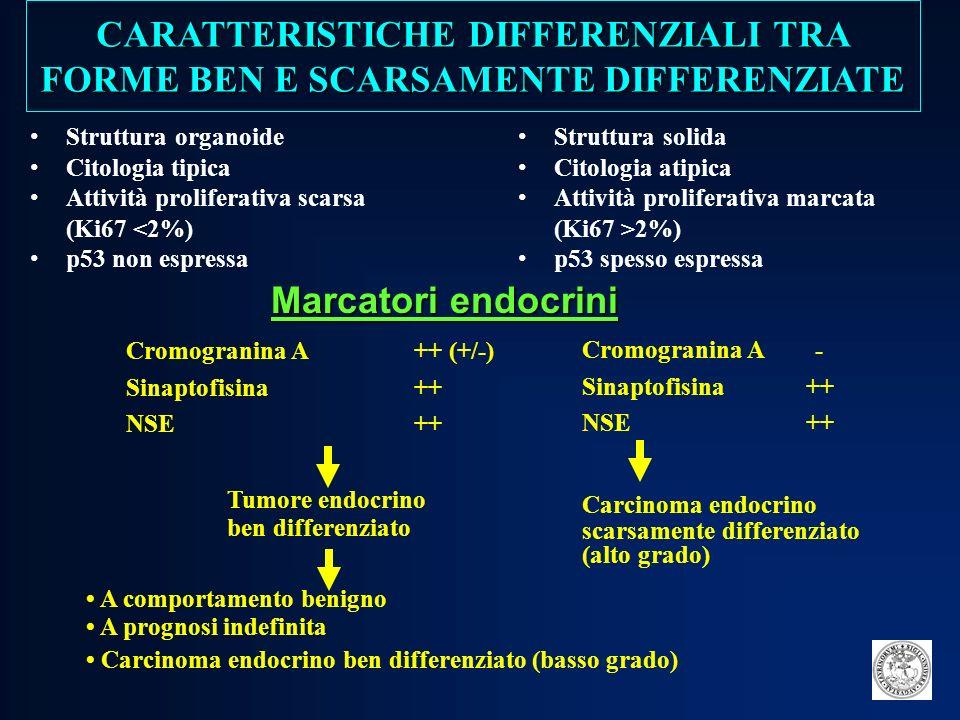CARATTERISTICHE DIFFERENZIALI TRA FORME BEN E SCARSAMENTE DIFFERENZIATE