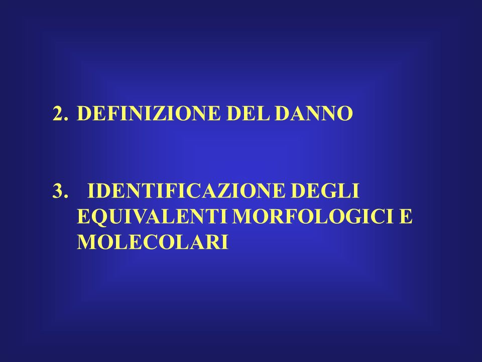DEFINIZIONE DEL DANNO IDENTIFICAZIONE DEGLI EQUIVALENTI MORFOLOGICI E MOLECOLARI