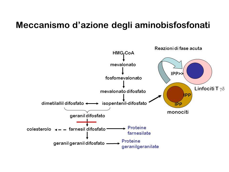 Meccanismo d'azione degli aminobisfosfonati