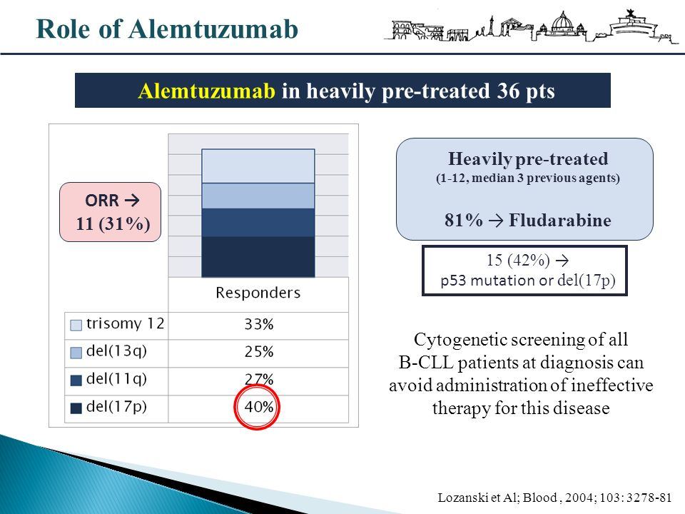 Role of Alemtuzumab Alemtuzumab in heavily pre-treated 36 pts