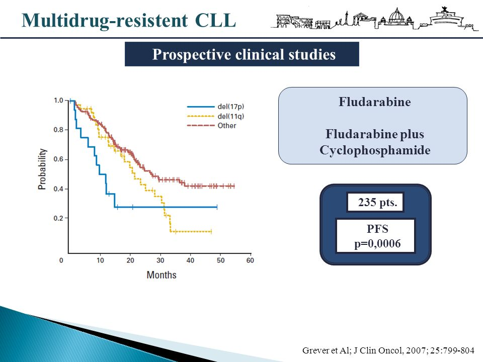 Prospective clinical studies Fludarabine plus Cyclophosphamide
