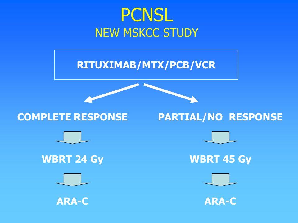 RITUXIMAB/MTX/PCB/VCR
