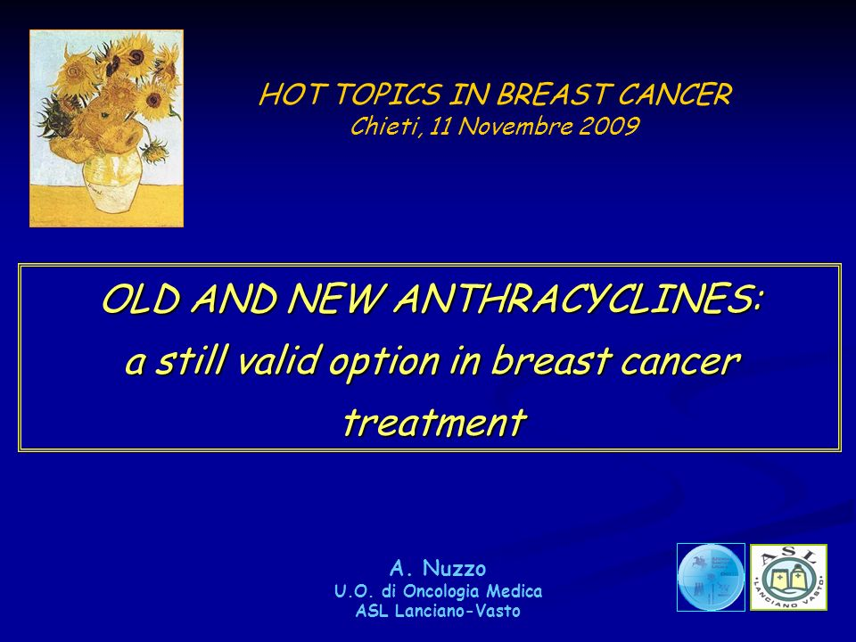 HOT TOPICS IN BREAST CANCER Chieti, 11 Novembre 2009