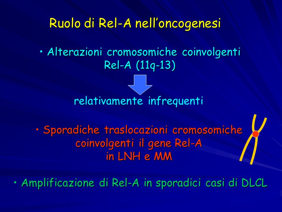 Ruolo di Rel-A nell'oncogenesi