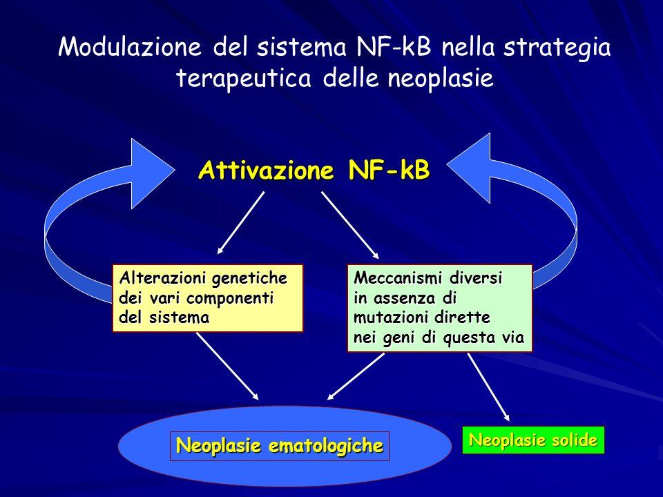 Modulazione del sistema NF-kB nella strategia terapeutica delle neoplasie