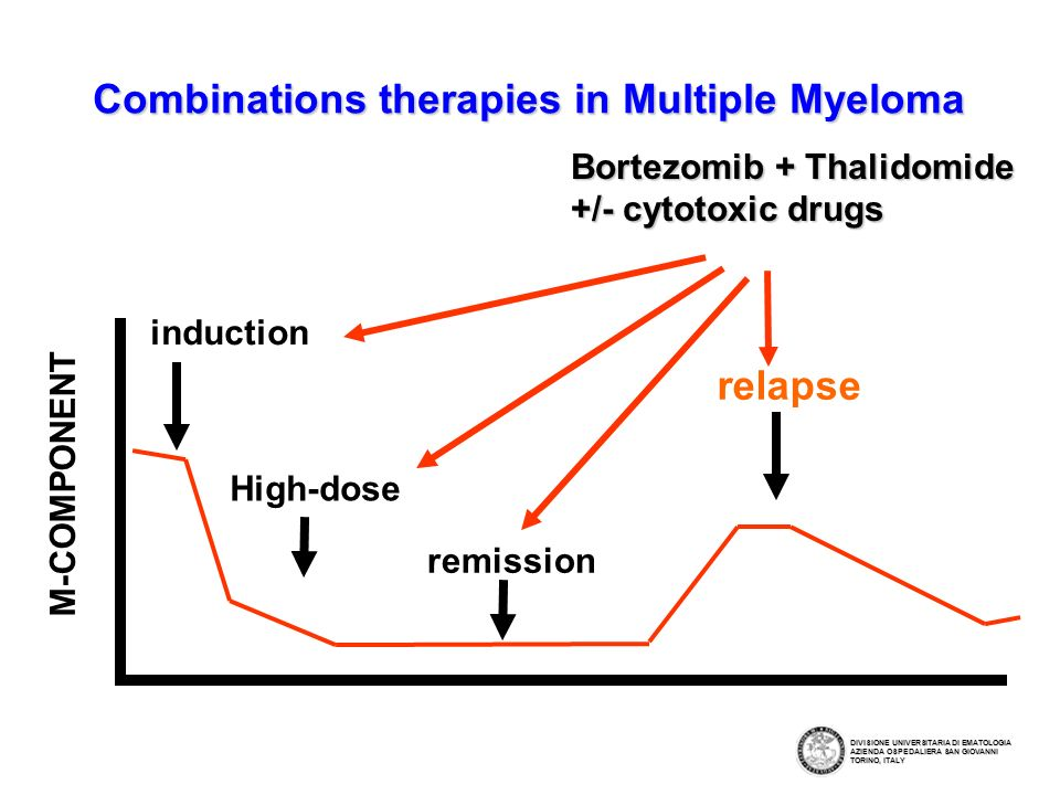 Combinations therapies in Multiple Myeloma