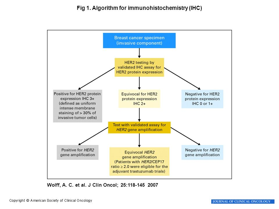 Fig 1. Algorithm for immunohistochemistry (IHC)