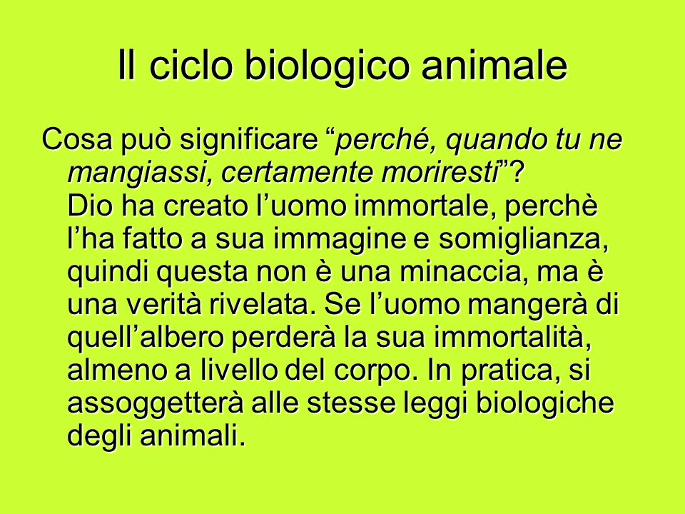 Il ciclo biologico animale