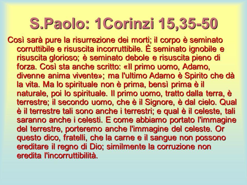 S.Paolo: 1Corinzi 15,35-50