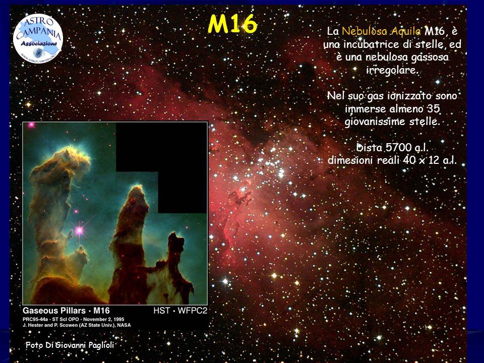Nel suo gas ionizzato sono immerse almeno 35 giovanissime stelle.