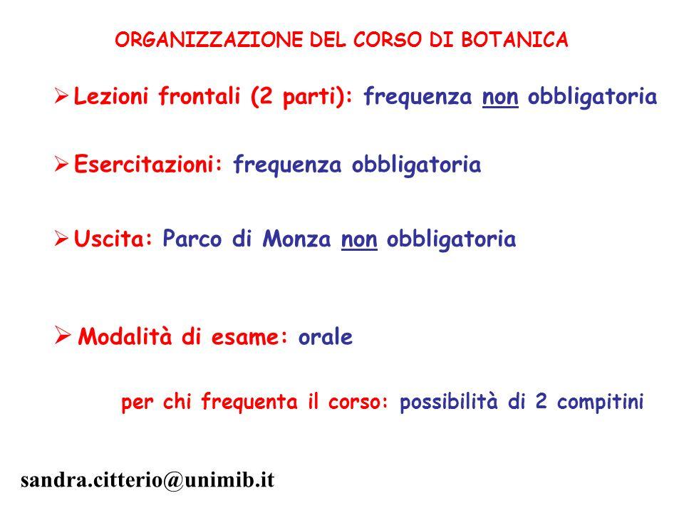 Modalità di esame: orale