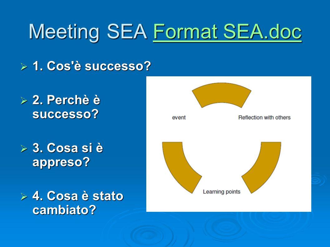 Meeting SEA Format SEA.doc