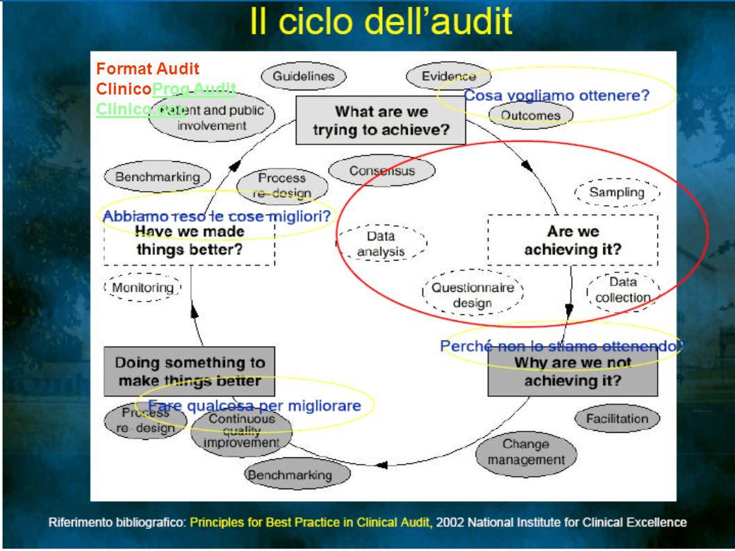 Format Audit ClinicoProg Audit Clinico.doc