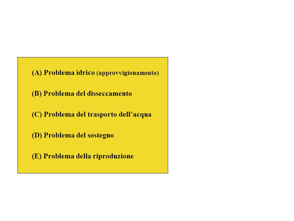 (A) Problema idrico (approvvigionamento)