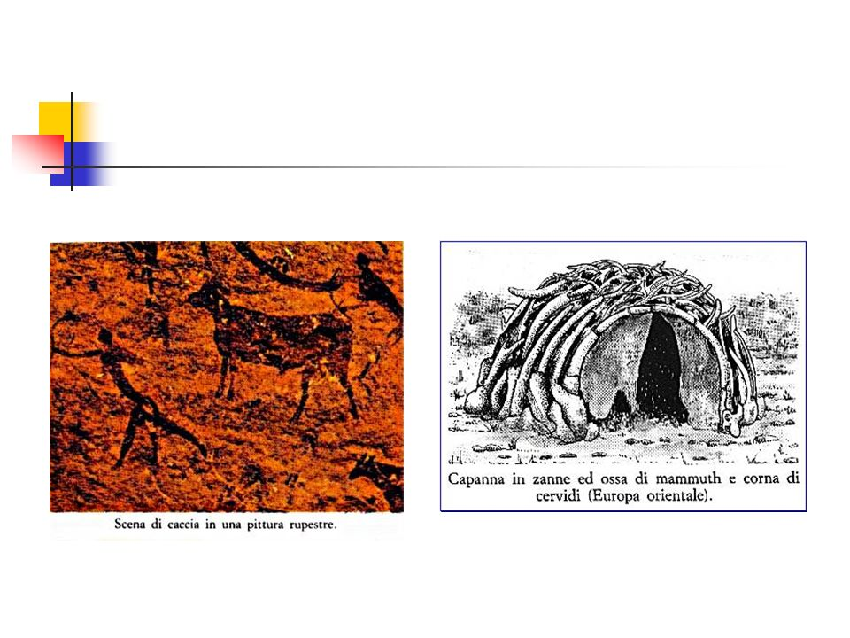 Grazie Alle raffigurazioni rupestri dei Cro-Magnon sappiamo, ad esempio, del rinoceronte lanoso europeo dell'Era Glaciale, del Megaloceros giganteus, un cervo dalle grandi corna e dalla grossa gobba, ecc. C'è un preciso riscontro tra i mammut riprodotti e quelli ritrovati nei ghiacciai; inoltre questi artisti conoscevano bene l'aspetto e le modificazioni stagionali degli animali dipinti: la muta estiva del bisonte, la deformazione boccale del salmone maschio nel periodo riproduttivo, il bramire del cervo maschio durante il periodo degli amori, ecc.
