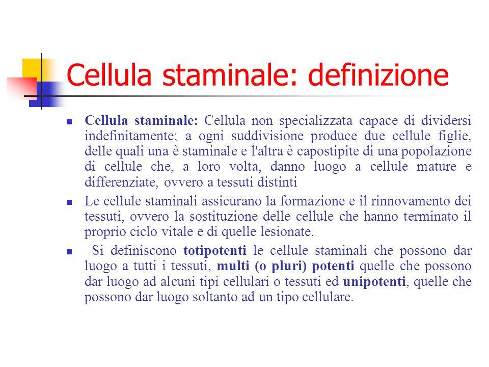 Cellula staminale: definizione