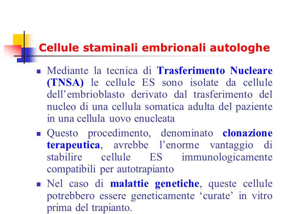 Cellule staminali embrionali autologhe