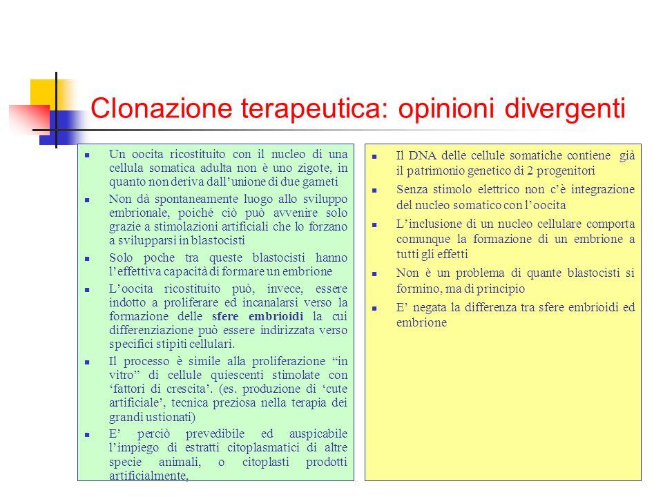 Clonazione terapeutica: opinioni divergenti