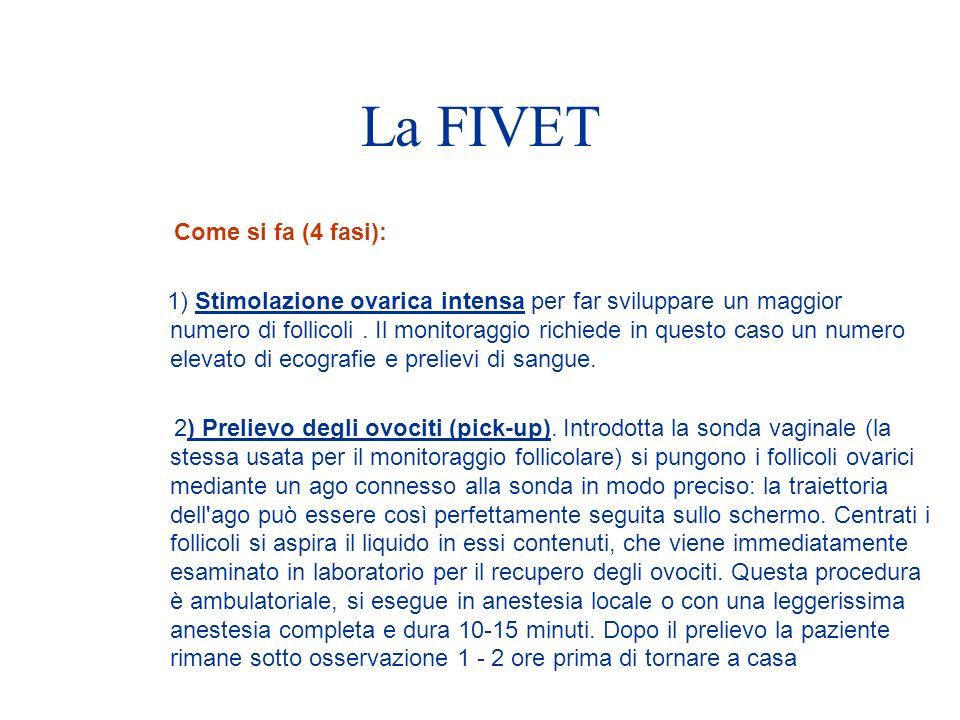 La FIVET Come si fa (4 fasi):