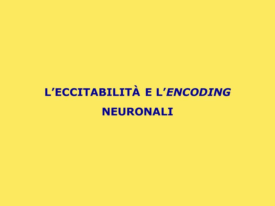 L'ECCITABILITÀ E L'ENCODING NEURONALI