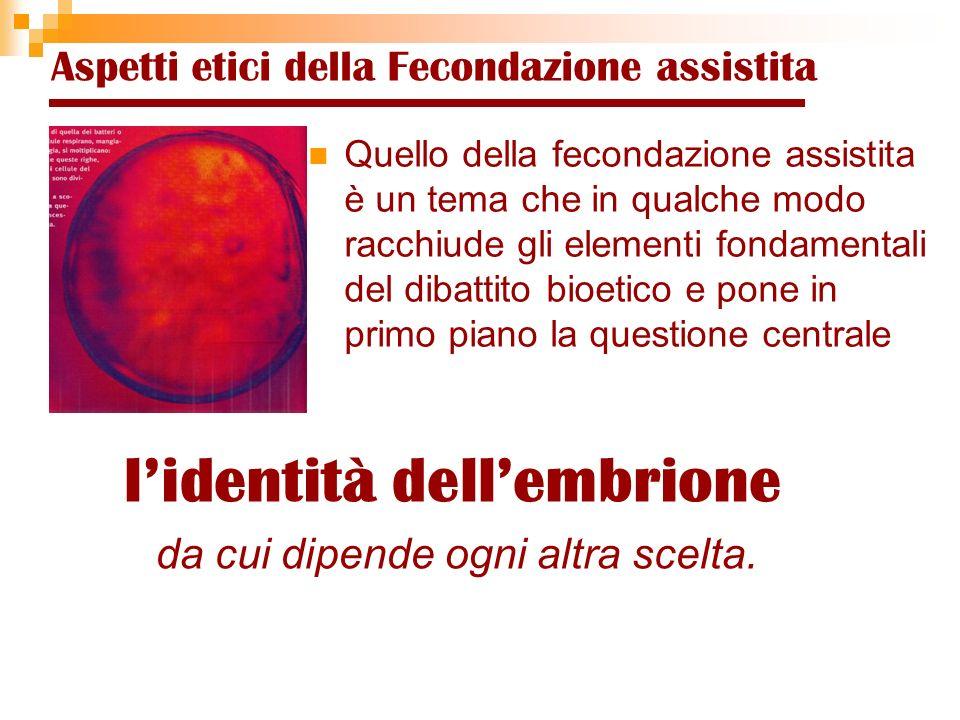 l'identità dell'embrione