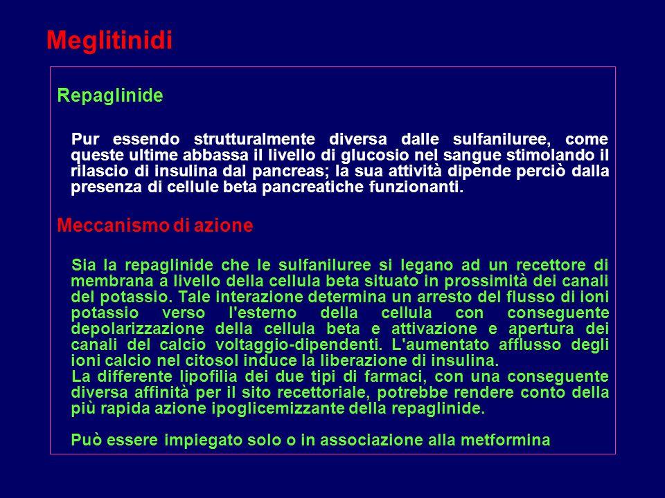 Meglitinidi Repaglinide Meccanismo di azione