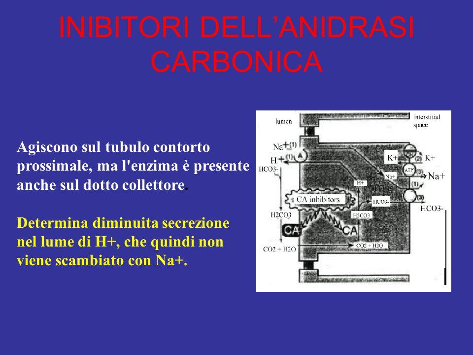 INIBITORI DELL'ANIDRASI CARBONICA