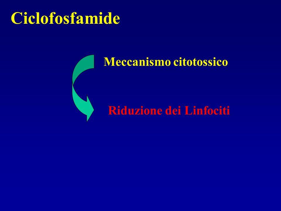 Ciclofosfamide Meccanismo citotossico Riduzione dei Linfociti