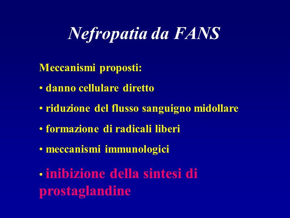 Nefropatia da FANS Meccanismi proposti: danno cellulare diretto