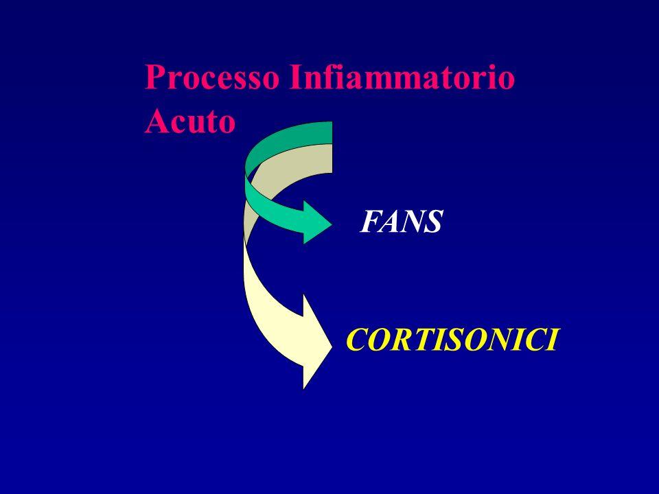 Processo Infiammatorio Acuto
