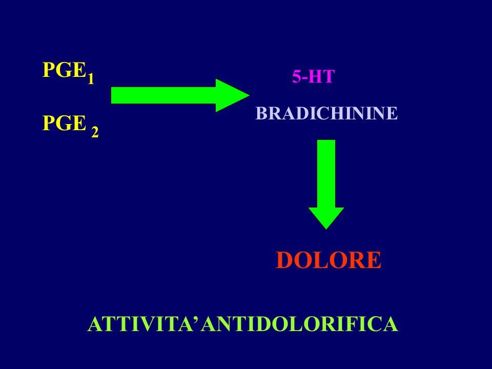 PGE 5-HT 1 BRADICHININE PGE 2 DOLORE ATTIVITA' ANTIDOLORIFICA