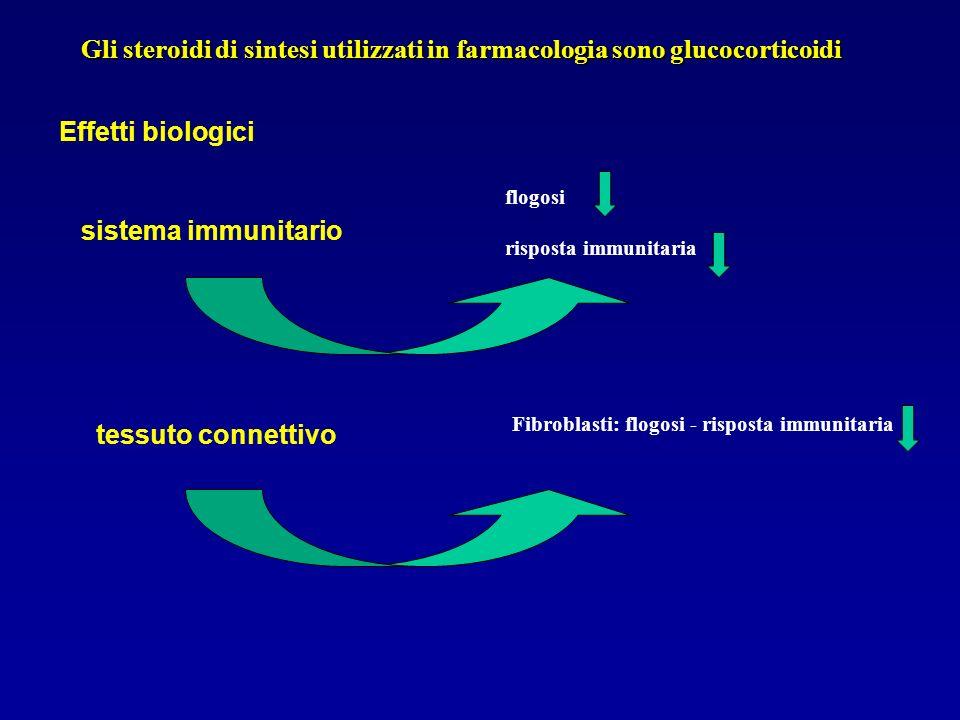 Gli steroidi di sintesi utilizzati in farmacologia sono glucocorticoidi