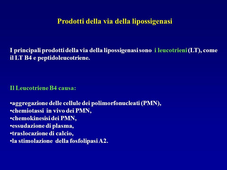 Prodotti della via della lipossigenasi