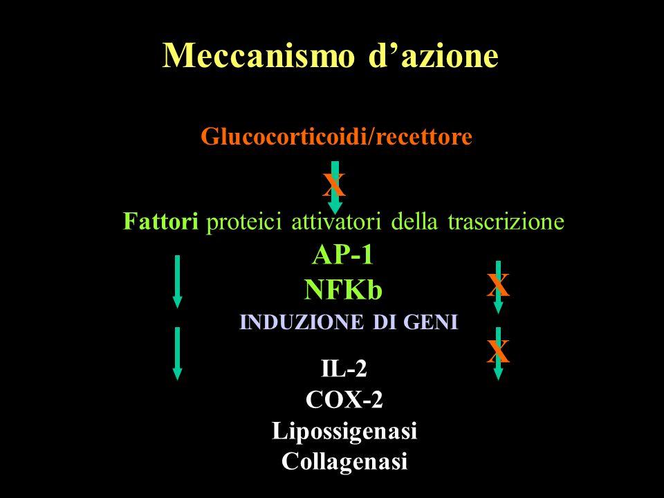 Fattori proteici attivatori della trascrizione