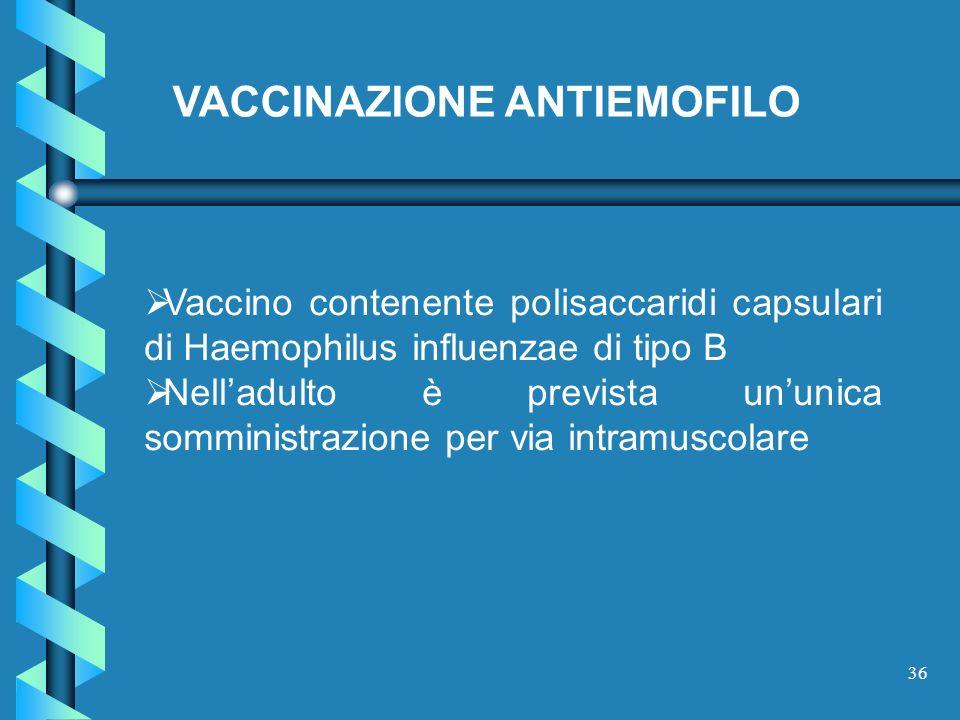 VACCINAZIONE ANTIEMOFILO