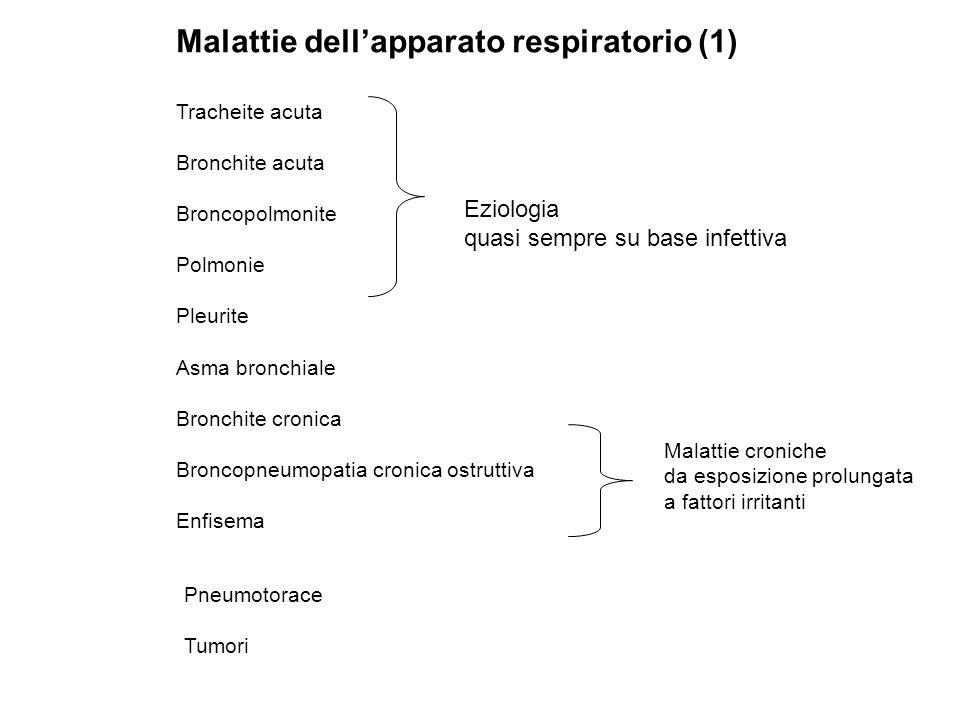 Malattie dell'apparato respiratorio (1)