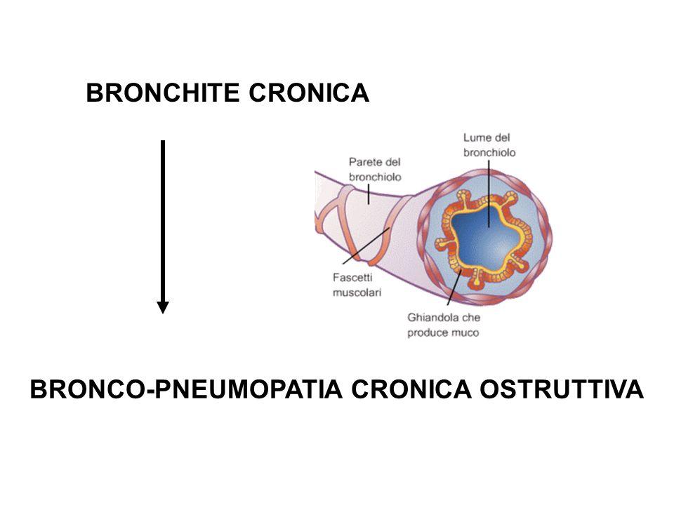 BRONCHITE CRONICA BRONCO-PNEUMOPATIA CRONICA OSTRUTTIVA